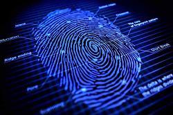 Click image for larger version.  Name:Fingerprint.jpg Views:181 Size:65.4 KB ID:6681