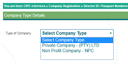 Click image for larger version.  Name:Company type.png Views:19 Size:11.6 KB ID:7893